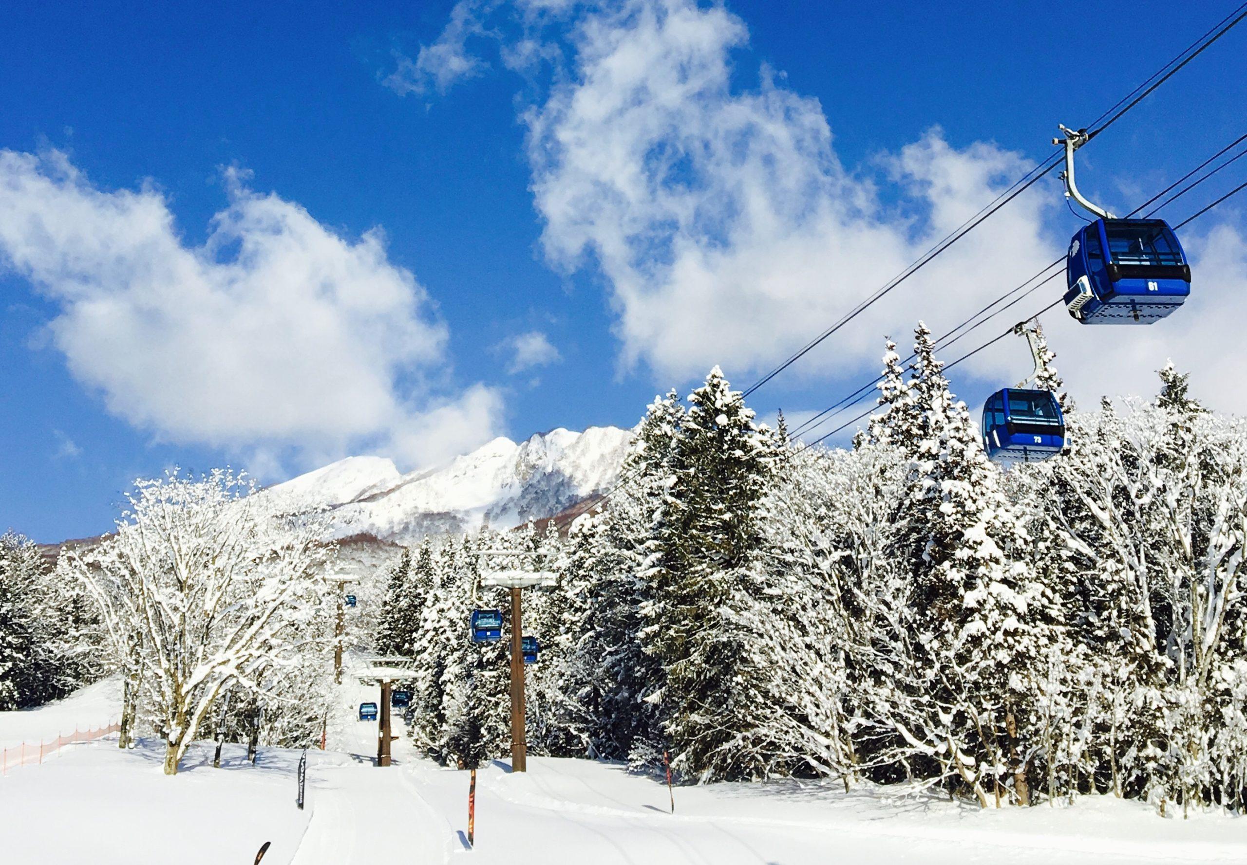 高原 場 妙高 積雪 スキー